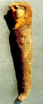 Falcon Mummy, side view