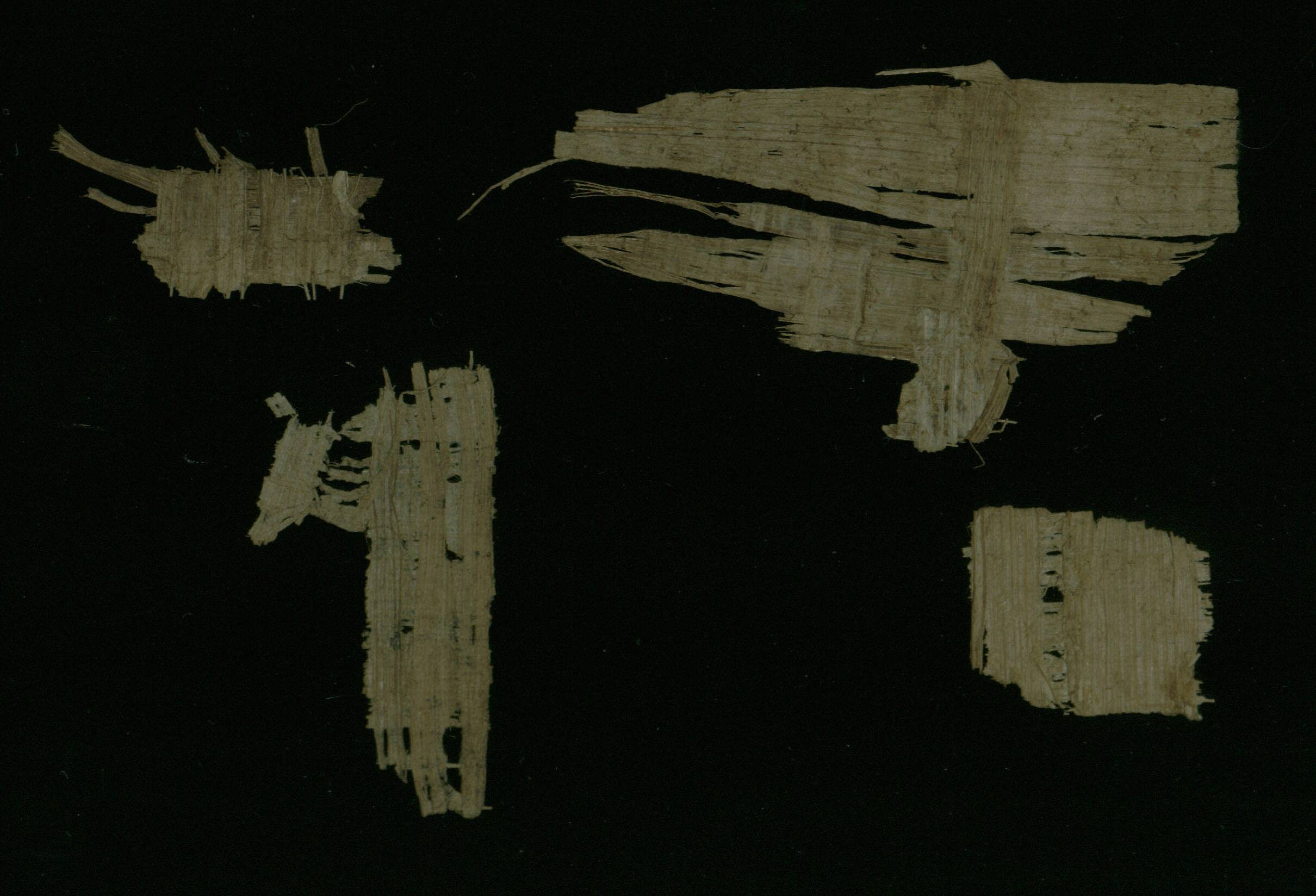Demotic Papyrus fragments - Verso