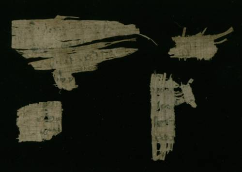 Demotic Papyrus fragments - Recto