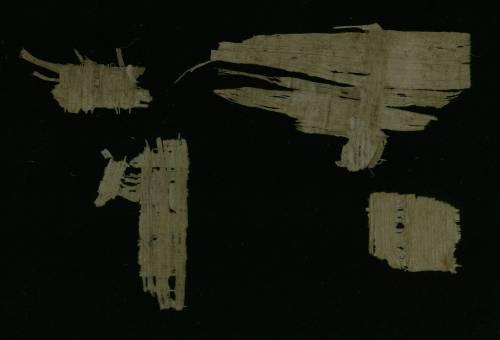 Demotic Papyrus fragments - Verso