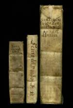 17th century Itallian vellum bound books.  These simple undecorated bindings have hand-written titles.